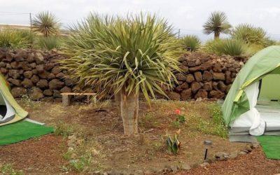 Agro Camping Invernaderito Tenerife